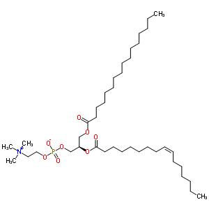 1-棕榈酰-2-棕榈油酰基-sn-甘油-3-磷酰胆碱结构式_53595-24-7结构式